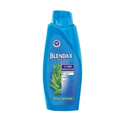 Blendax 500 ml 2/1 ısırgan ozlu